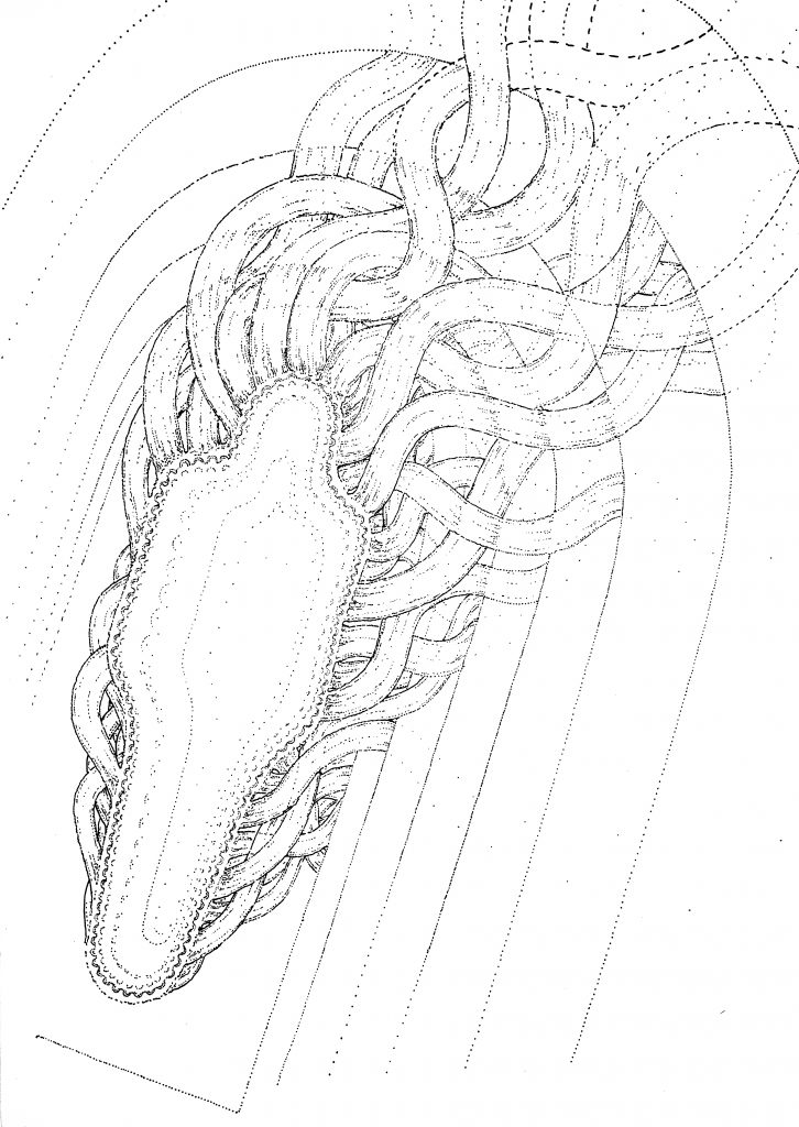 Breacking body, drawing by DMT vision